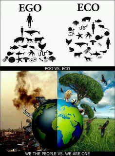 I am on the Eco side. I recycle everything I use, promote sustainability, and do not buy anything I do not need!