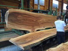 Van een boom uit een tuin of park tot een tafel bij u in huis. Ook een boomstamtafel of zwevende wandplanken? Neem een kijkje bij woodend!