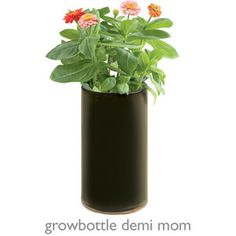 Every Mom loves flowers, now she can grow her own.  Growbottle Demi Mom: $20.  #MothersDay