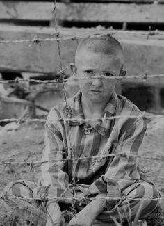 Niño detrás de una alambrada de un Campo de Concentración cualquiera, lo importante de esta imagen es su mirada triste, sin esperanza...