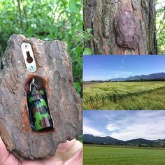 As if a camo bison geocache in the woods wouldn't be hard enough to find already! Survival Life Hacks, Camping Survival, Survival Skills, Survival Quotes, Survival Tips, Geocaching Containers, Recycling Containers, Stash Containers, Hidden Spaces