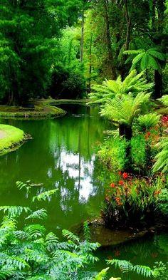 Beautiful Nature Pictures, Beautiful Nature Wallpaper, Amazing Nature, Nature Photos, Beautiful Landscapes, Beautiful World, Beautiful Gardens, Landscape Photography, Nature Photography