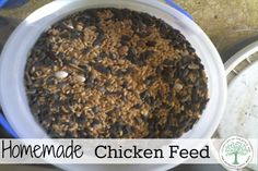 Happy chickens=great eggs!  Here's a recipe to make your own feed for smaller flocks, or supplemental scratch for larger flocks. The Homesteading Hippy