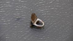 Un inodoro sale a flote durante una operación de limpieza del canal San Martín de París.rn rn