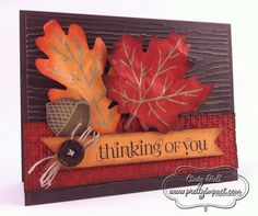 Stampin Up! autumn accents bigz die (big shot)
