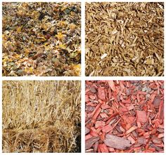 The best mulch to prevent weeds depends on where the mulch lies, what else you need it to do...and, of course, cost.
