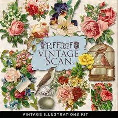 Free Vintage Flowers!