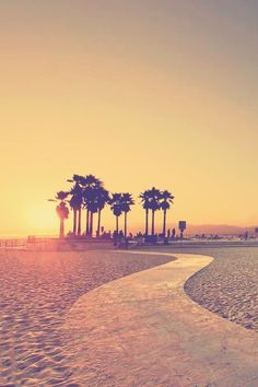 Santa Monica Places To Travel, Places To See, California Beach, Venice California, California Travel, Southern California, Santa Monica, Belle Photo, Palm Trees