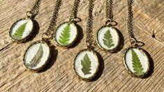 Fern! #realfern #thetinytwig www.thetinytwig.net Ferns, Pendant Necklace, Nature, Inspiration, Shopping, Jewelry, Biblical Inspiration, Naturaleza, Jewlery