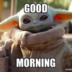 Yoda Pictures, Yoda Images, Star Wars Pictures, Yoda Meme, Yoda Funny, Dark Humor Jokes, Stupid Funny Memes, Cute Cartoon Wallpapers, Cartoon Pics