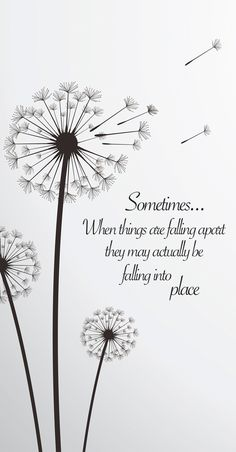 "Quote: Sometimes when things are falling apart. - ""Sometimes when things are falling apart they may actually be falling into place. Words Quotes, Me Quotes, Motivational Quotes, Sayings, Peace Quotes, Friend Quotes, Dandelion Quotes, Dandelion Art, Dandelion Tattoo Meaning"