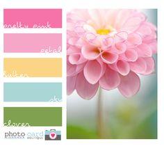 beautiful pink color scheme