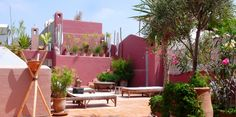Roof Top Garden in Marrakech at Riad Magellan