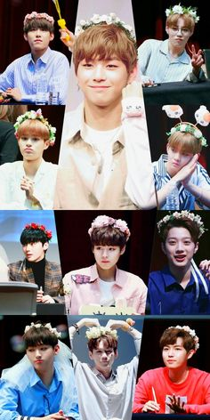 Wanna One × Flower Crown Jinyoung, Kpop Backgrounds, You Are My World, Lai Guanlin, Fan Picture, Produce 101 Season 2, Ong Seongwoo, Fandom, Ha Sungwoon
