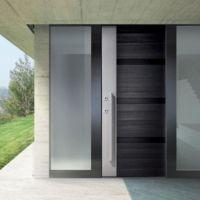 Contemporary front doors