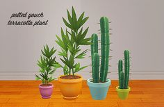 Potted youch & terracotta plant pot recolors Credit: Veranka, Eversims Download >> meshes required