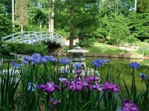 The gardens at Duke, South Carolina