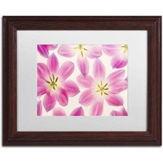 Trademark Fine Art 'Cerise Pink Tulips' Canvas Art by Cora Niele, White Matte, Wood Frame, Size: 11 x 14, Multicolor