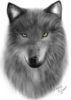 Wolf by valsharessa