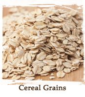 TheGrainMillWF.com | The Grain Mill of Wake Forest | Your Budget Conscious Source for Storable, Long Term Bulk Foods and Whole Grains