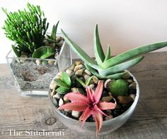 A great take on DIY succulent planters from Home Depot! #DIHWorkshop