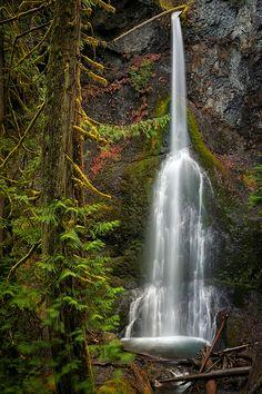 Marymere Falls, Olympic National Park, Washington; photo by Michael Riffle