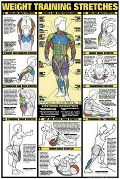 This outlines some good basic stretches that will help you avoid injury when done before lifting.