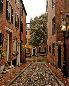 """Cecelia on Instagram: """"Such a beautiful city street!...Tag a friend!...📷 credit: @kimmyn_…"""" Beacon Hill, City Streets, Places To Go, Around The Worlds, Photo And Video, Pretty, Beautiful, Instagram, Boston"""