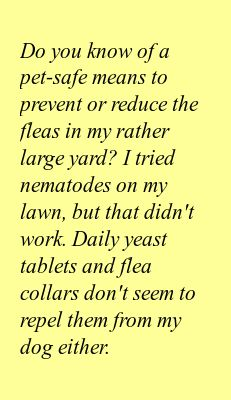 Do you know of a pet-safe means to prevent or reduce the fleas in my rather large yard? I tried nematodes on my lawn, but that didn't work. Daily yeast tablets and flea collars don't seem to repel them from my dog either.