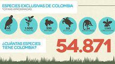 Resultado de imagen para biodiversidad colombiana