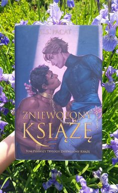Polish cover of Captive Prince. So gorgeous! Fantasy Series, Fantasy Books, Achilles And Patroclus, Captive Prince, Draco Harry Potter, Cool Books, Lunar Chronicles, Couple Art, How To Train Your Dragon
