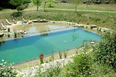 Natural swimming pools - no chemicals and they are beautiful!