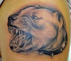 Best Pitbull Tattoo designs |nature of the owner - Tattoos Blog