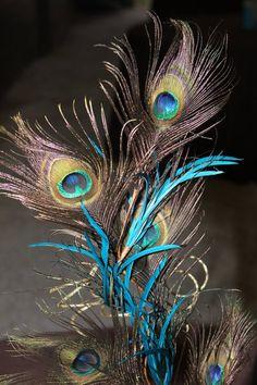 Peacock Feather Sprays, Turquoise aquarium rocks for centerpieces :  wedding blue brown centerpeice diy peacock reception turquoise W0789709