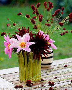 Dahlia buketter http://frafroetilblomst.blogspot.com