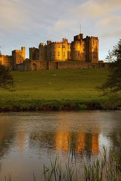 Alnwick Castle Northumberland. Inspiration and filming spot for Harry Potter. So lucky to have been there. It's gorgeous.