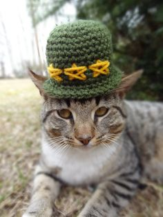 Soldier Cat Hat Costume Small Dog   Memorial by iheartneedlework, $16.00