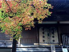 善方律寺 八幡 京都