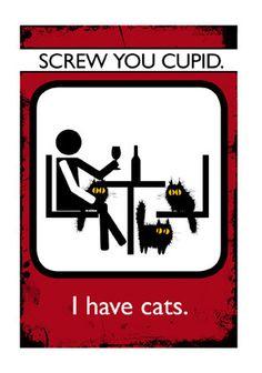 Valentine / AntiValentine Cat Card Screw You by MADOLDCATLADY,