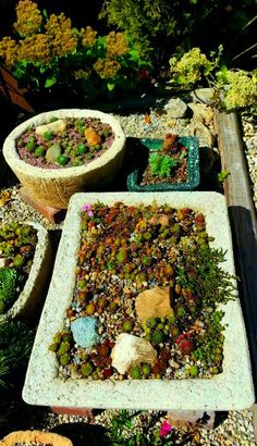 What About Hypertufa In Winter? - The Hypertufa Gardener