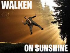 Walken for the win..ok, I am pinning this on my I'm Walking on Sunshine board...I know, that is a shoes board, but this is just too funny...can't pass it up....never mind....