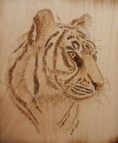 Pyrography+Wood-Burning | Tiger On Wood Pyrography by Bill Fugerer - Tiger On Wood Fine Art ...