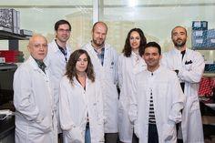Identifican nuevas claves para mejorar la inmunoterapia en el cáncer