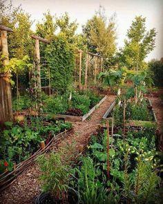 48 Affordable Garden Landscaping Ideas Trends Home Decoration and Remodelling Affordable Garden Landscaping When coming up with a garden landscape design, you shou