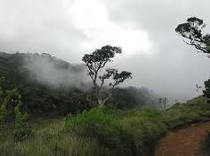 Image result for horton place picture sri lanka Sri Lanka, Clouds, Places, Pictures, Outdoor, Image, Photos, Outdoors, Outdoor Games