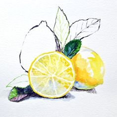 Lemon Illustration by Saehee Park - 2014, Watercolor and Chinese ink on paper, 25 x 25 cm, www.parksaehee.com #yellow