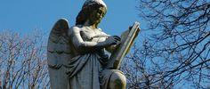 Visit Mt Auburn Cemetery