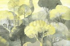 Looking Out at the Trees - Wall Mural & Photo Wallpaper - Photowall