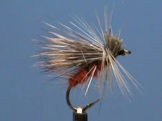 Fly Tying an October Caddis with Jim Misiura - YouTube