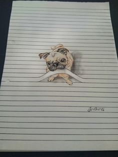 Check out these cute animal drawings on lined papers, the effects that she created shows her amazing talent in drawing these cute animals Drawings On Lined Paper, 3d Drawings, Amazing Drawings, Amazing Art, Unique Drawings, Funny Drawings, Illusion Kunst, Illusion Drawings, Illusion Art